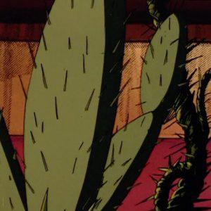 Mutated Cactus Plants
